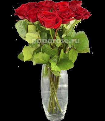 11 красных роз в вазе